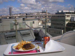 Paris Dachterrasse Printemps